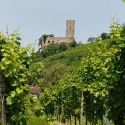 Strahlenburg Schriesheim