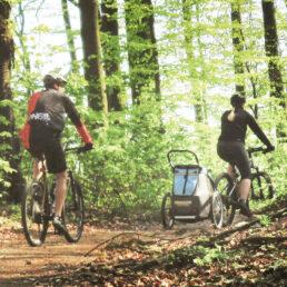 die-bergstrasse_tourismus-service-bergstrasse_radfahren