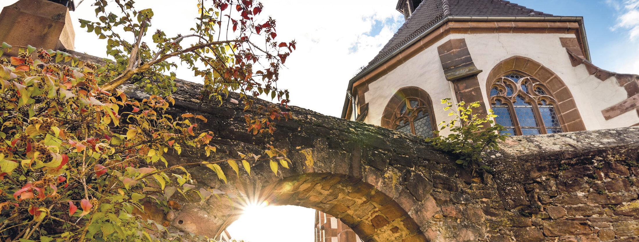 die_bergstrasse_tourismus-service-bergstrasse_titelbild_stadte_kultur_traube_ladenburg_neu